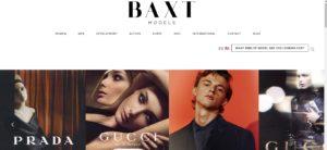 Baxt models
