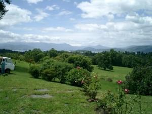 Countryside 4