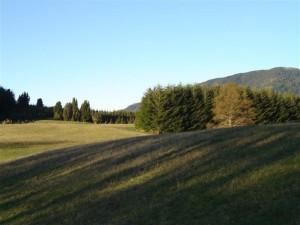 Countryside 5