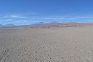 Desert 14
