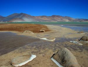 Desert 15