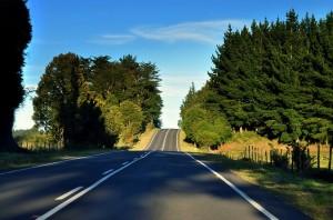 Roads 204