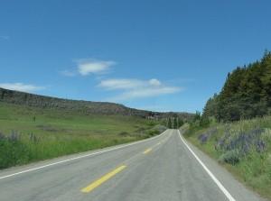 Roads 215
