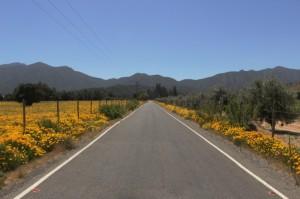 Roads 252