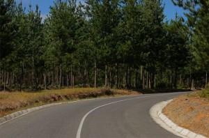 Roads 260